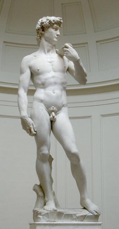 The David by Michelangelo Buonarroti