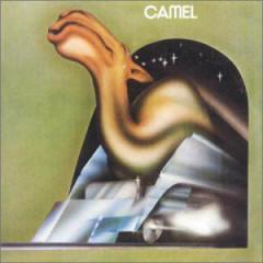 camel02
