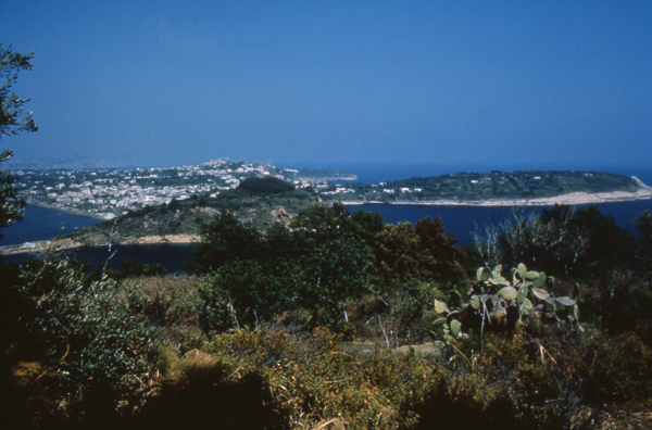 Panorama of Procida from the Vivara Islet - Photo R.D'anselmo © 1987